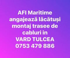 Angajam lacatusi navali pentru proiectul VARD-ELECTRO Tulcea